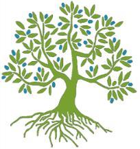 ENHCC Consultation Belgium 2018 Consultation Logo